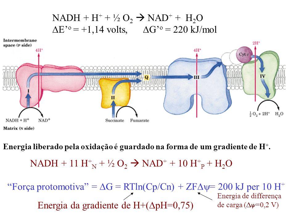 DE'o = +1,14 volts, DG'o = 220 kJ/mol