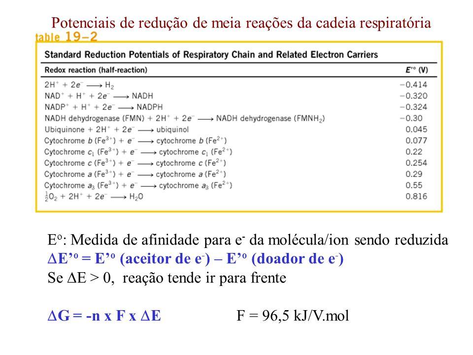 Potenciais de redução de meia reações da cadeia respiratória