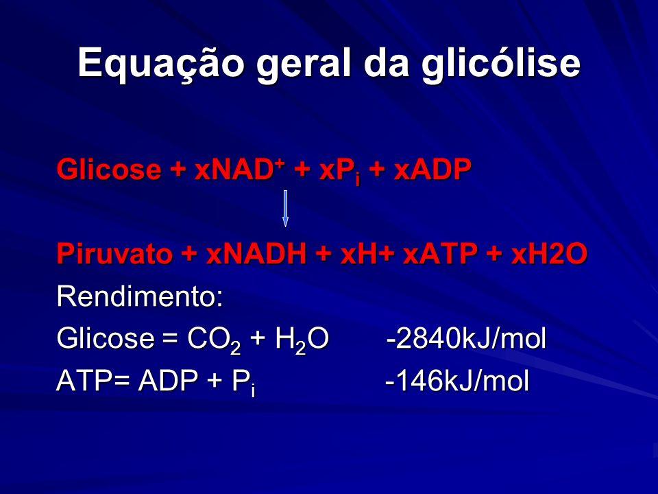Equação geral da glicólise