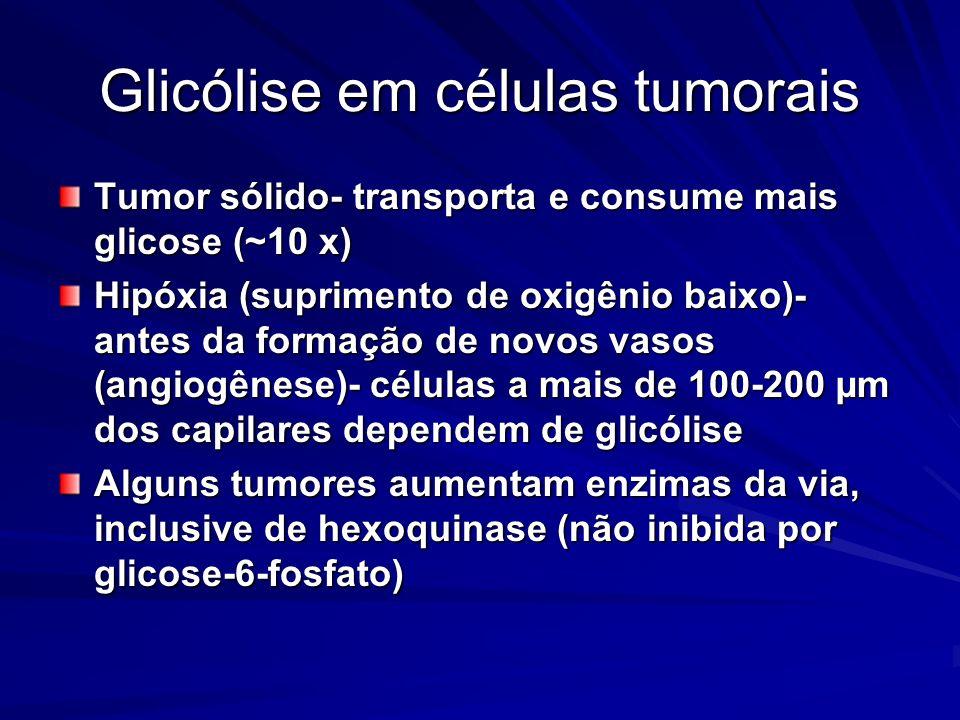 Glicólise em células tumorais
