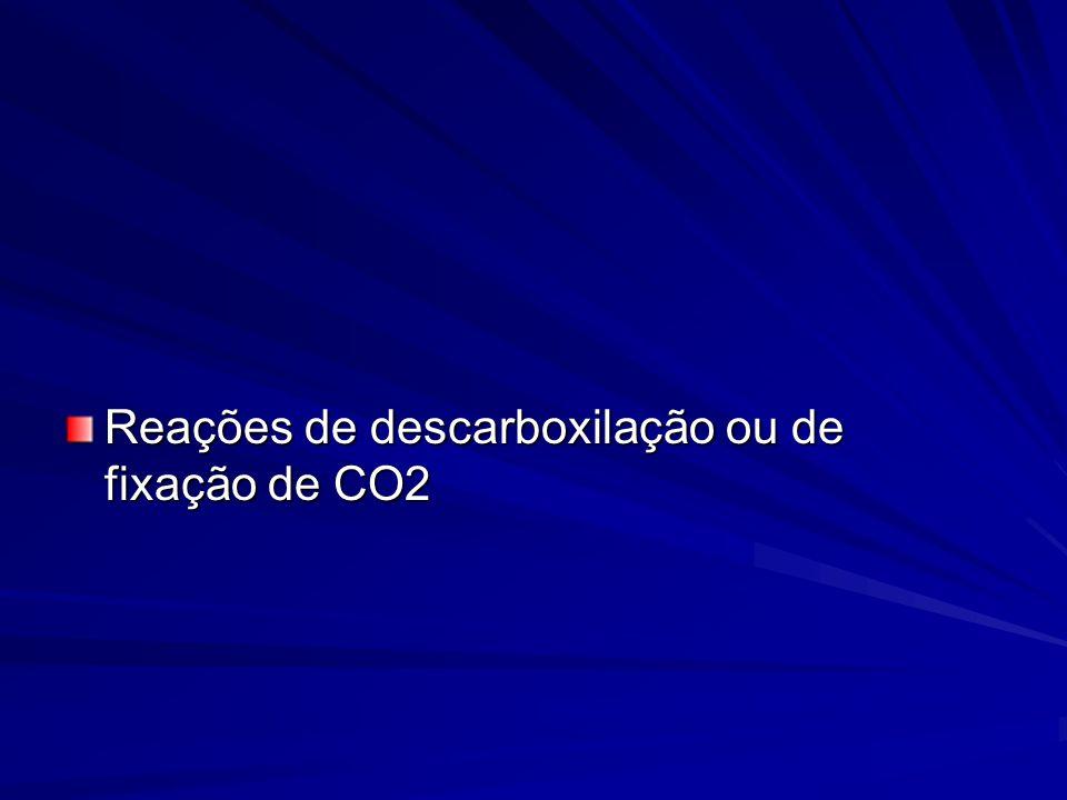 Reações de descarboxilação ou de fixação de CO2