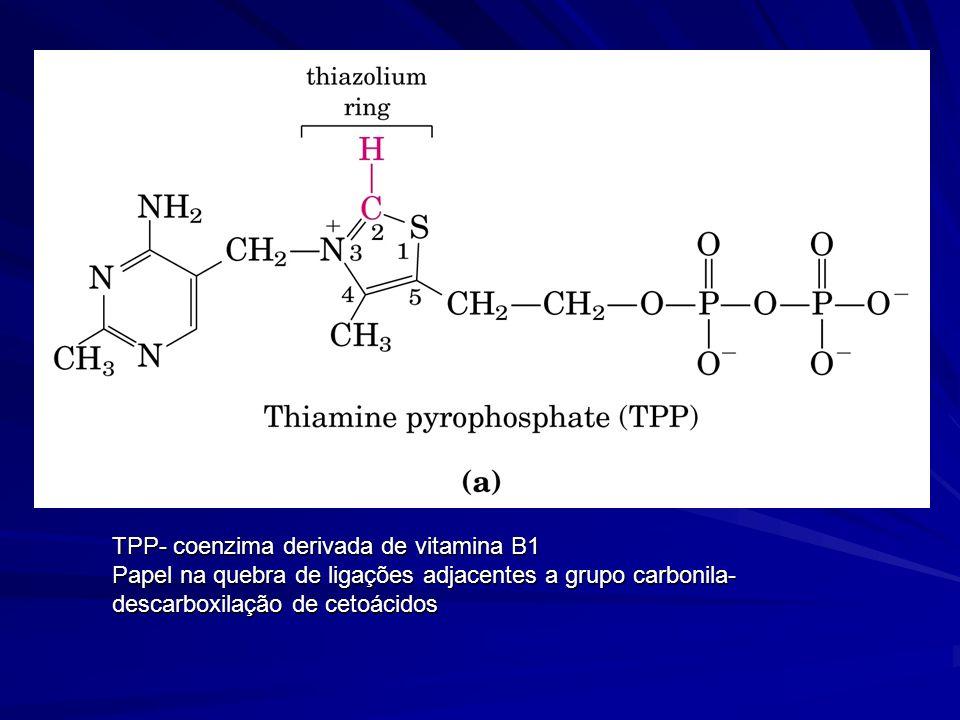 TPP- coenzima derivada de vitamina B1