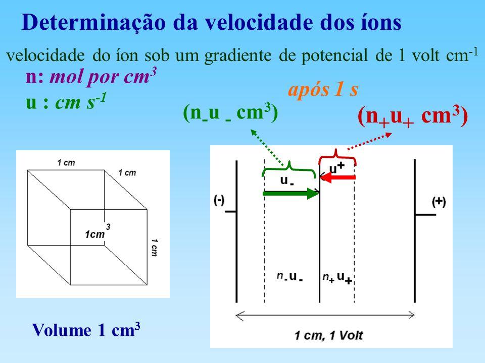 Determinação da velocidade dos íons
