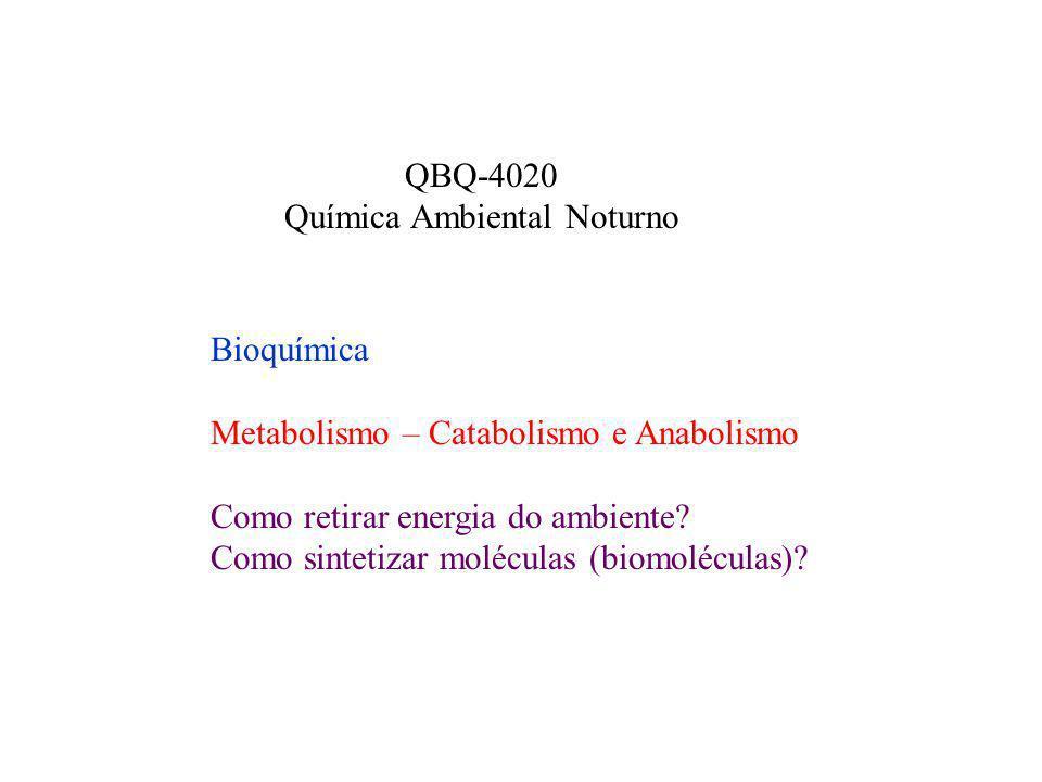 Química Ambiental Noturno