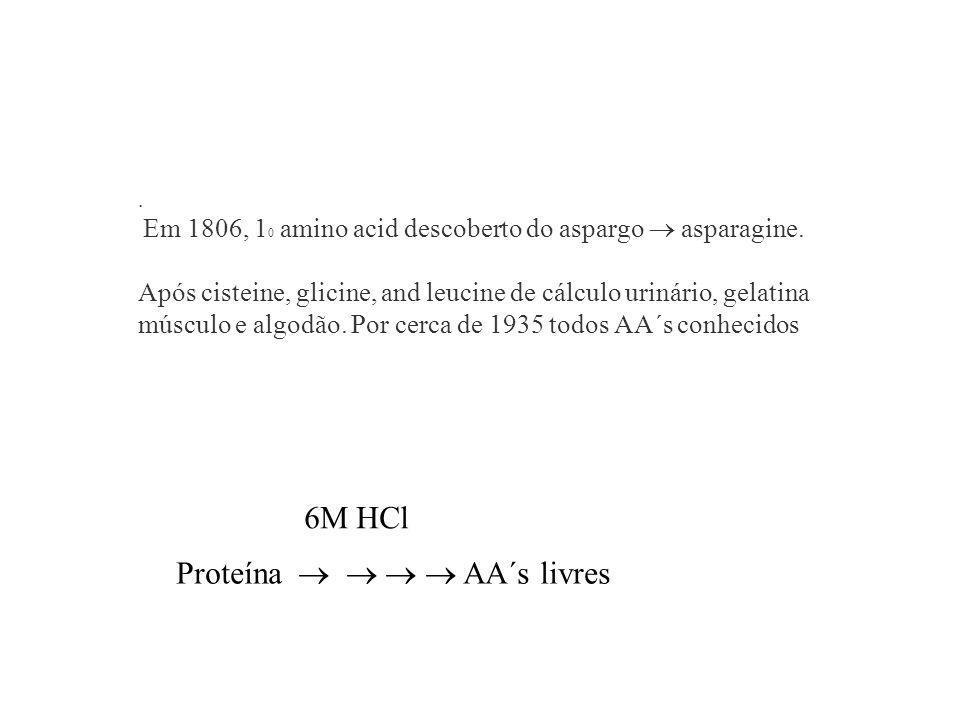 Proteína     AA´s livres
