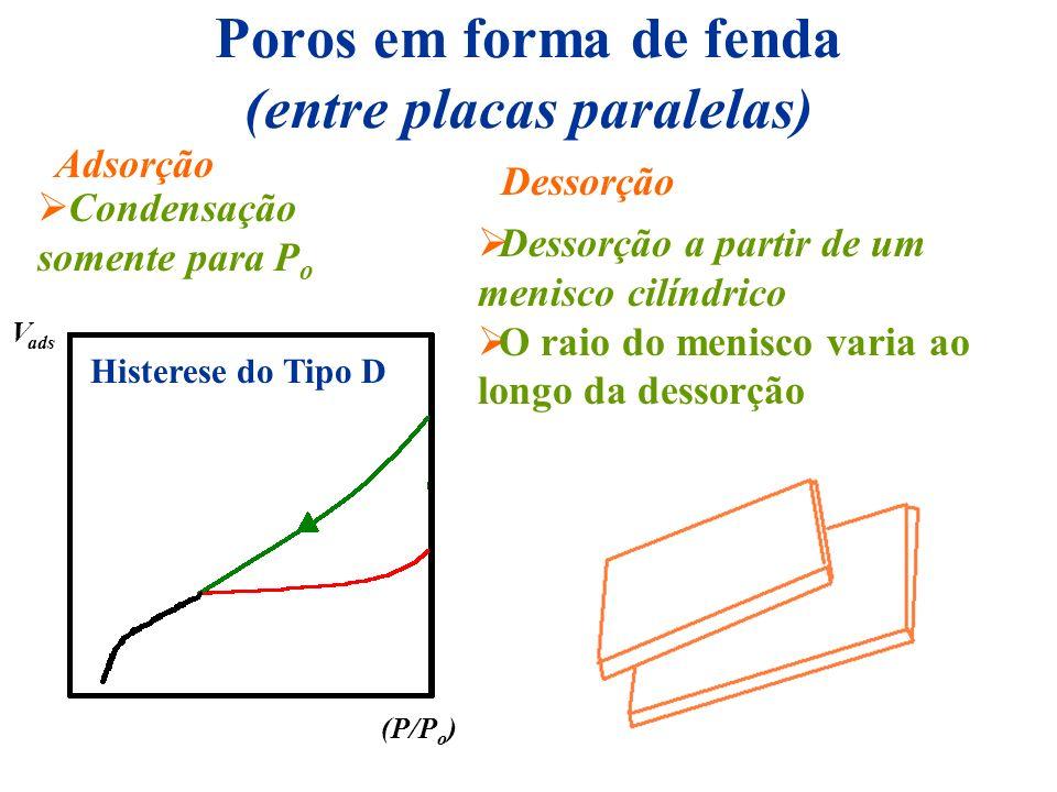 Poros em forma de fenda (entre placas paralelas)