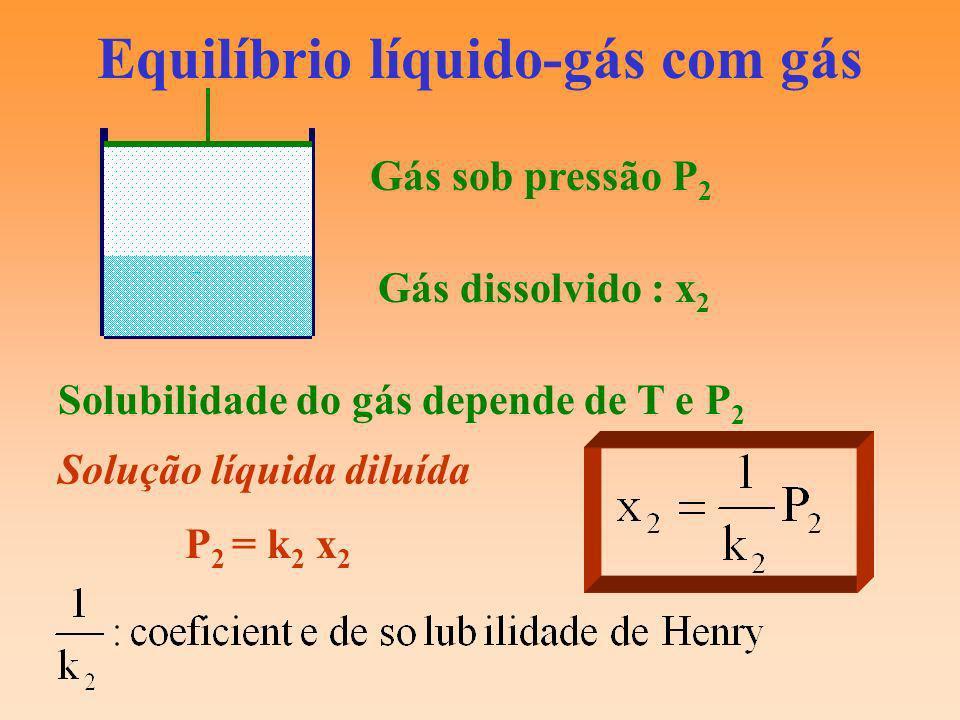 Equilíbrio líquido-gás com gás