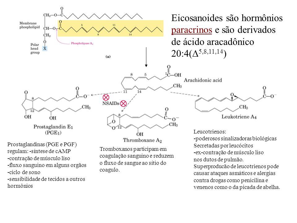 Eicosanoides são hormônios paracrinos e são derivados