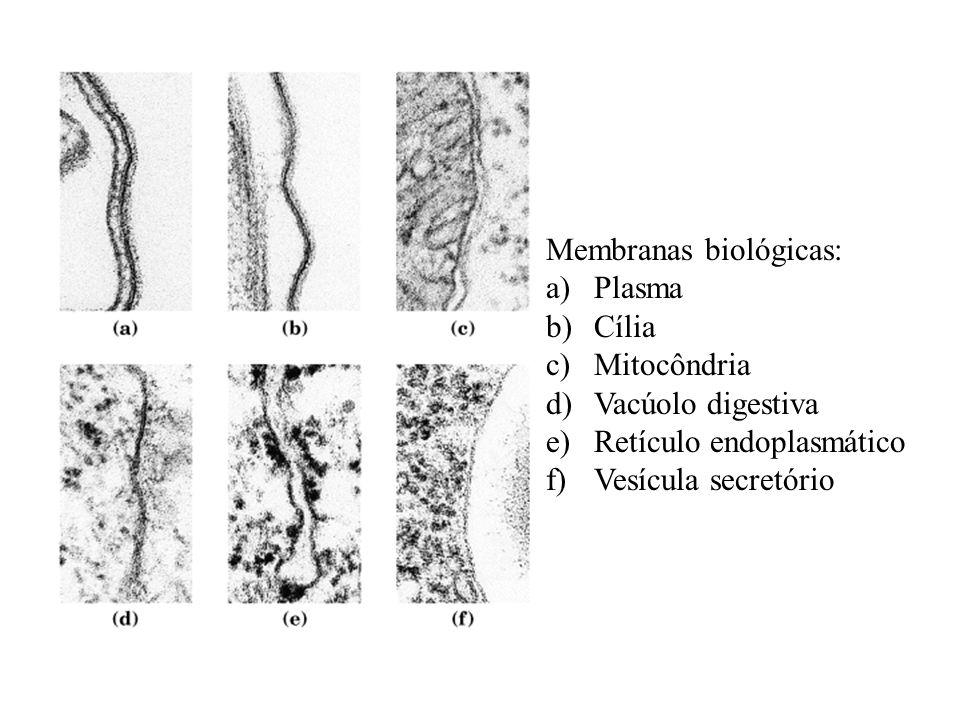Membranas biológicas: