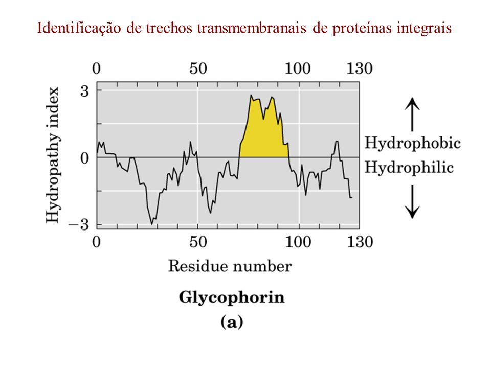 Identificação de trechos transmembranais de proteínas integrais