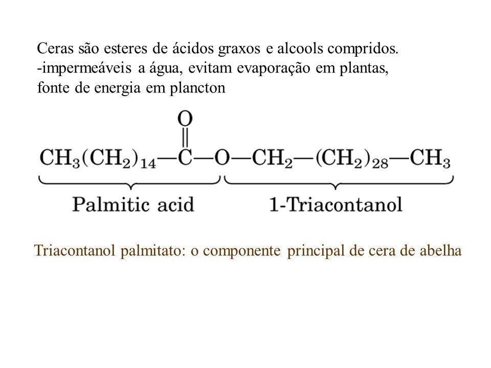Ceras são esteres de ácidos graxos e alcools compridos.