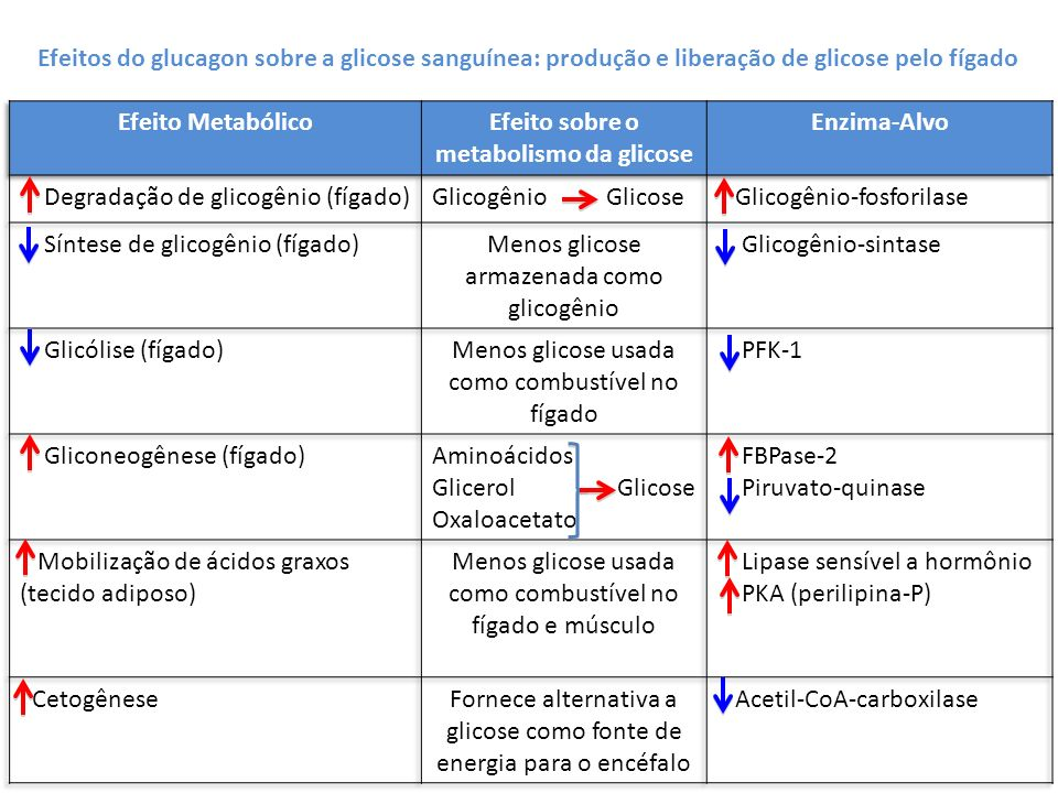 Efeito sobre o metabolismo da glicose