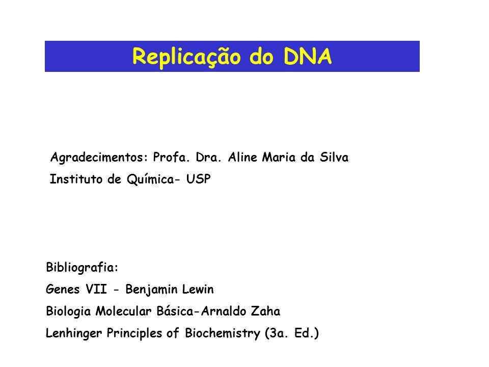 Replicação do DNA Agradecimentos: Profa. Dra. Aline Maria da Silva