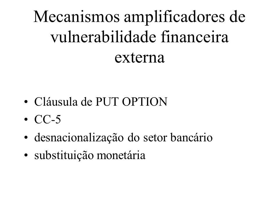 Mecanismos amplificadores de vulnerabilidade financeira externa