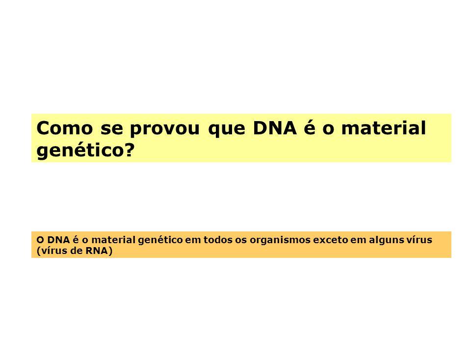 Como se provou que DNA é o material genético