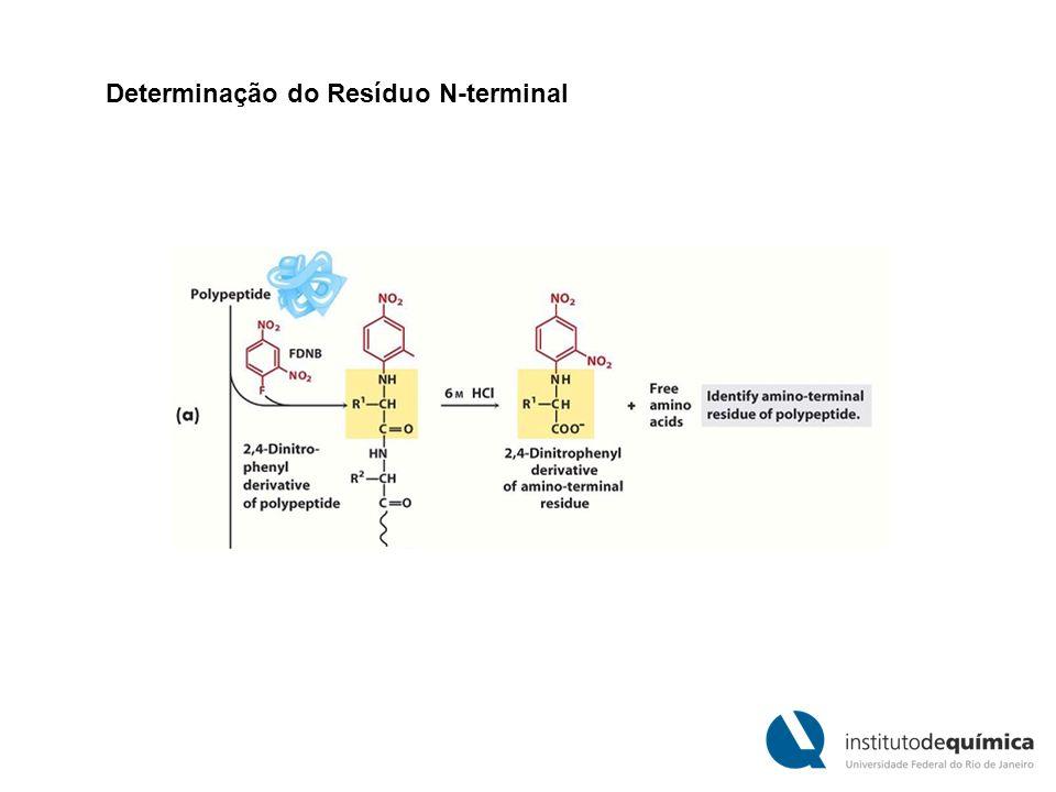 Determinação do Resíduo N-terminal