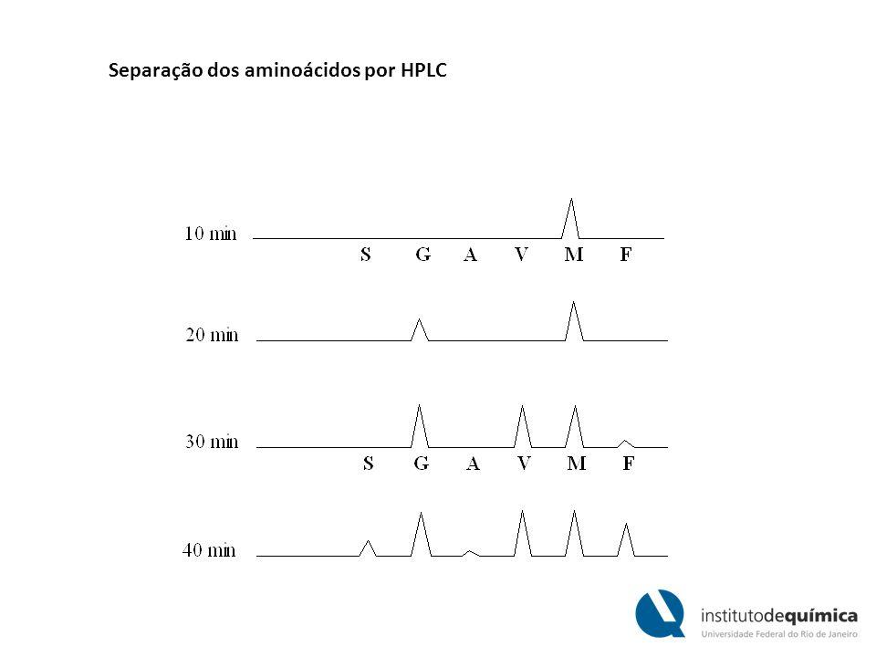 Separação dos aminoácidos por HPLC
