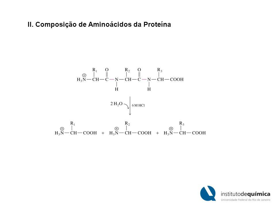 II. Composição de Aminoácidos da Proteína