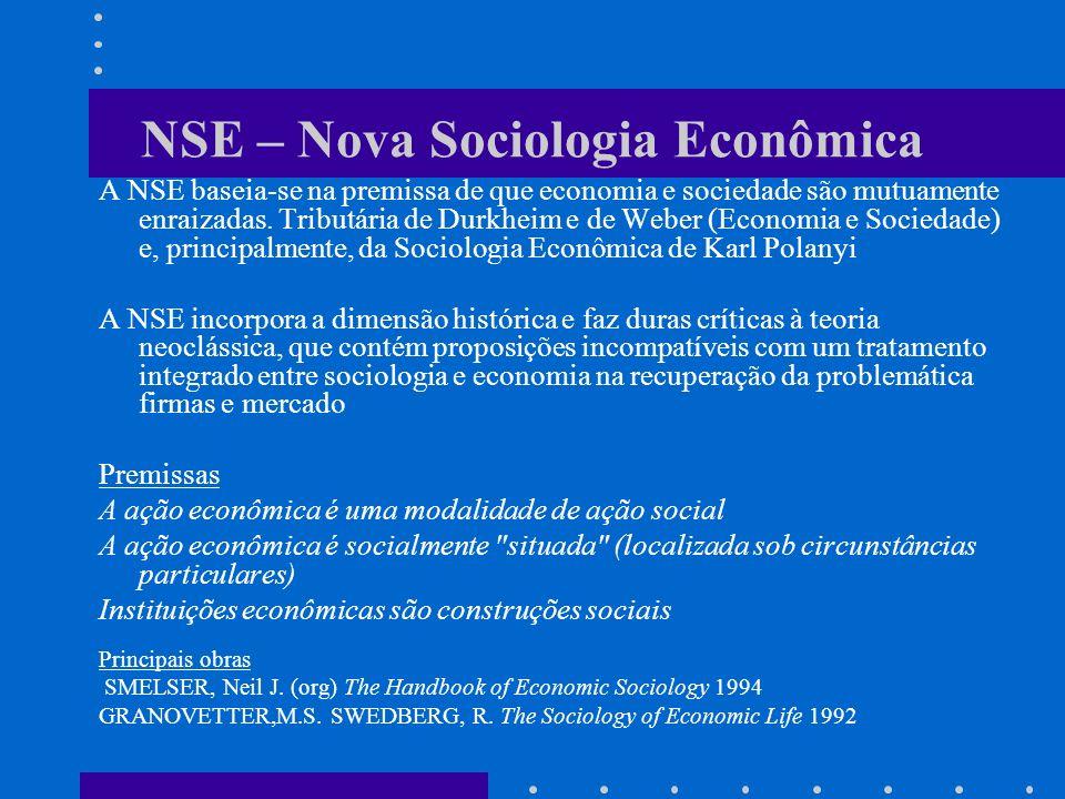 NSE – Nova Sociologia Econômica