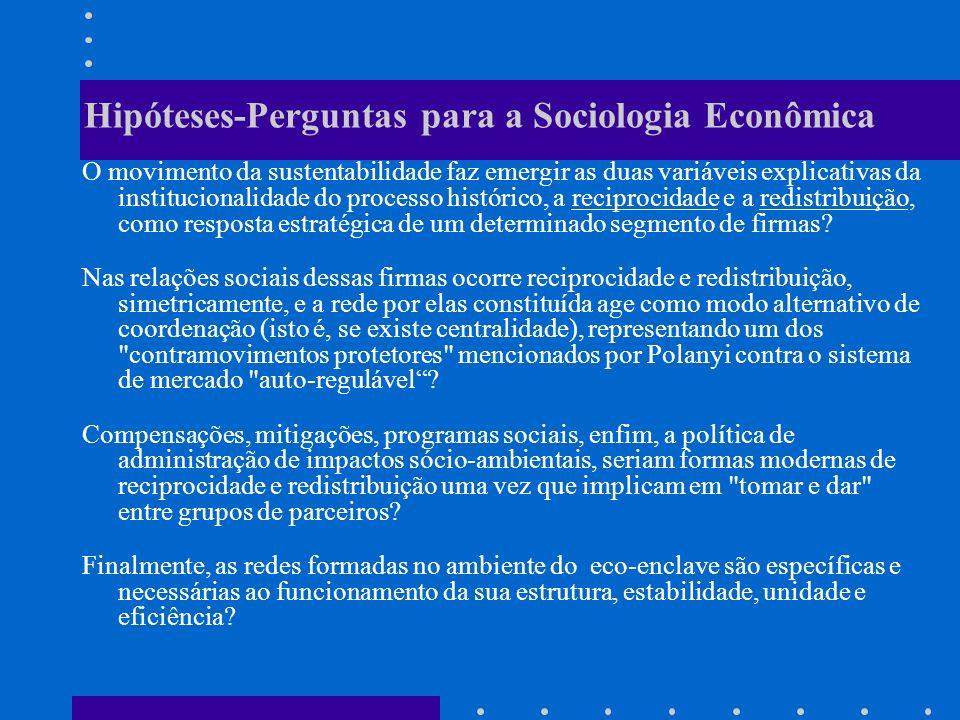 Hipóteses-Perguntas para a Sociologia Econômica