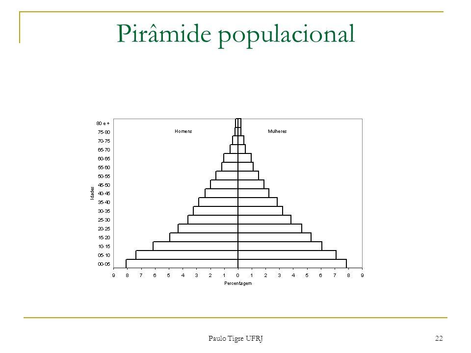 Pirâmide populacional