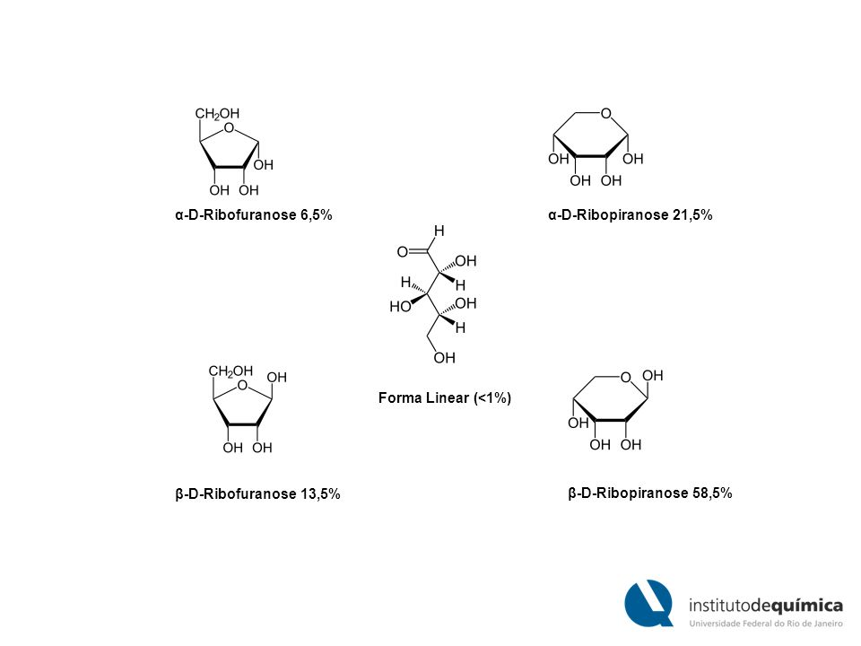 α-D-Ribofuranose 6,5%α-D-Ribopiranose 21,5% Forma Linear (<1%) β-D-Ribofuranose 13,5% β-D-Ribopiranose 58,5%