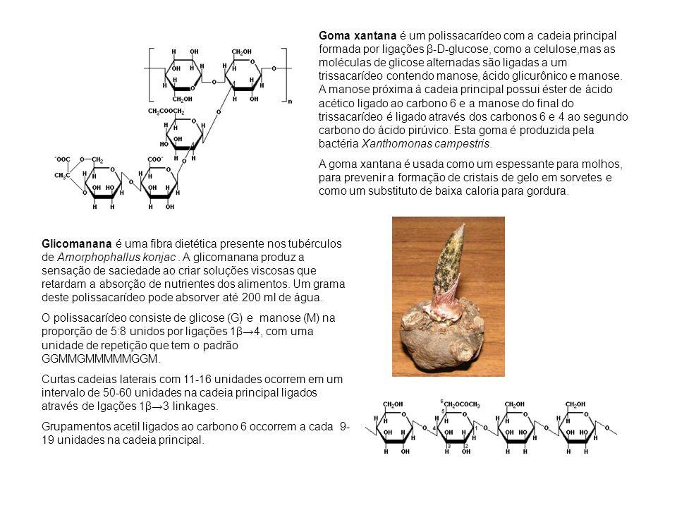 Goma xantana é um polissacarídeo com a cadeia principal formada por ligações β-D-glucose, como a celulose,mas as moléculas de glicose alternadas são ligadas a um trissacarídeo contendo manose, ácido glicurônico e manose. A manose próxima à cadeia principal possui éster de ácido acético ligado ao carbono 6 e a manose do final do trissacarídeo é ligado através dos carbonos 6 e 4 ao segundo carbono do ácido pirúvico. Esta goma é produzida pela bactéria Xanthomonas campestris.