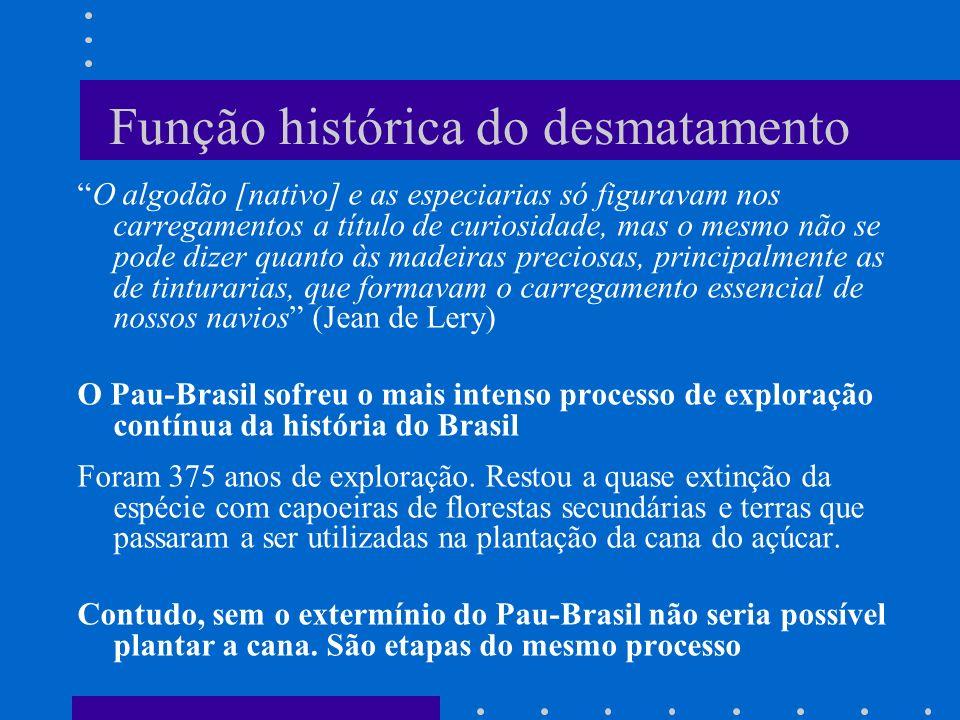 Função histórica do desmatamento