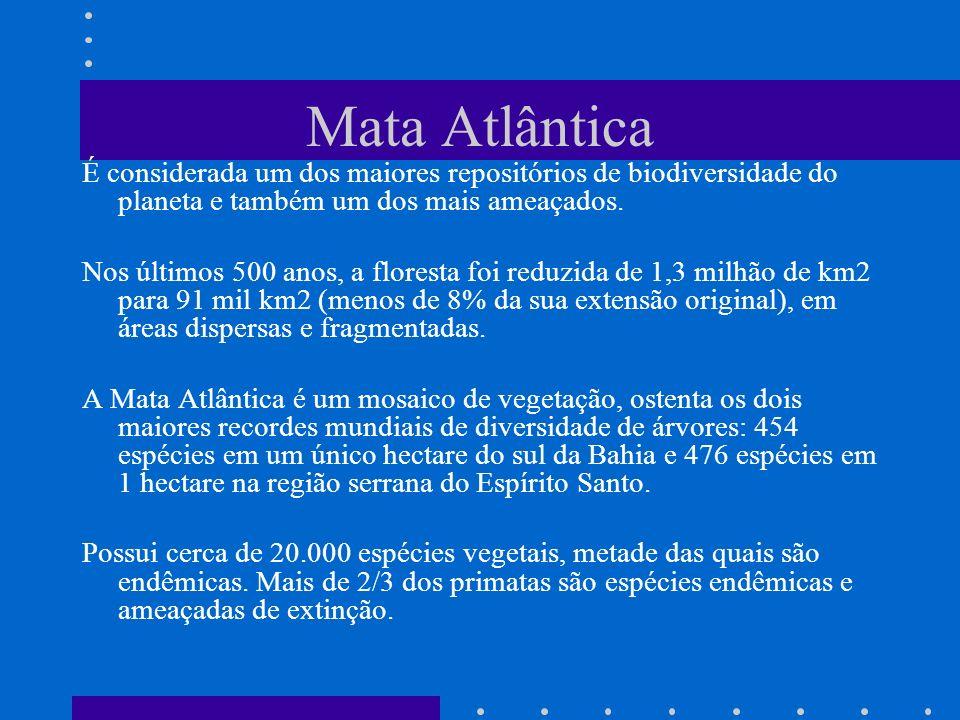 Mata Atlântica É considerada um dos maiores repositórios de biodiversidade do planeta e também um dos mais ameaçados.