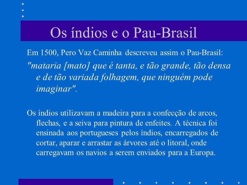 Os índios e o Pau-Brasil