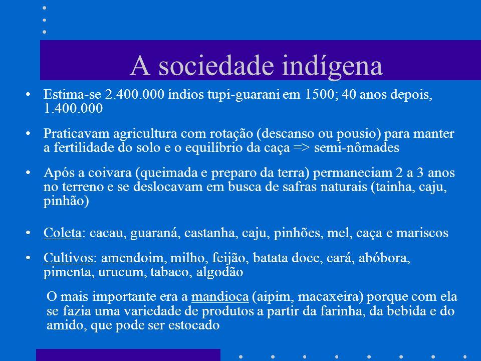 A sociedade indígena Estima-se 2.400.000 índios tupi-guarani em 1500; 40 anos depois, 1.400.000.