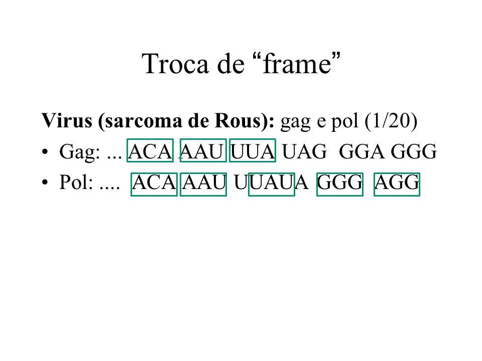 Troca de frame Virus (sarcoma de Rous): gag e pol (1/20)