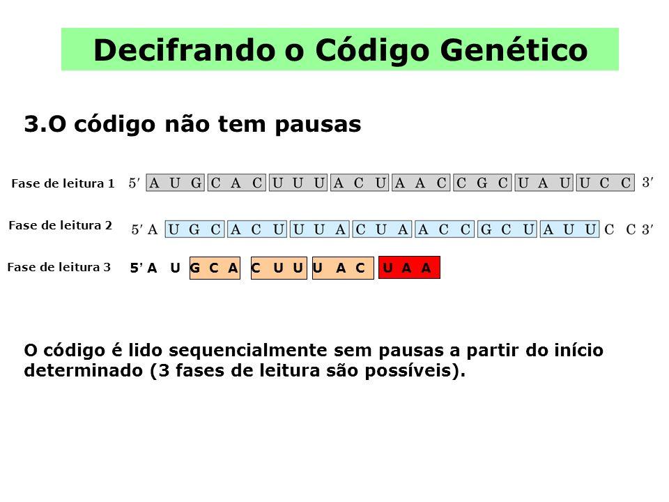 Decifrando o Código Genético