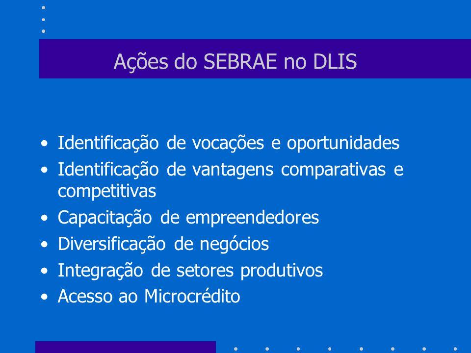 Ações do SEBRAE no DLIS Identificação de vocações e oportunidades
