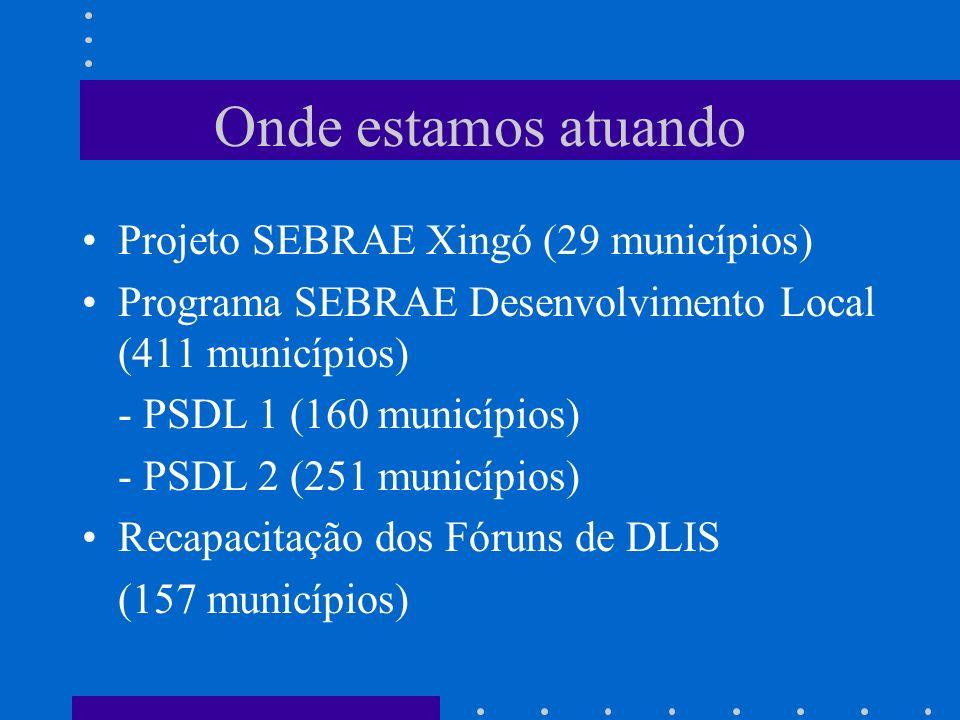 Onde estamos atuando Projeto SEBRAE Xingó (29 municípios)