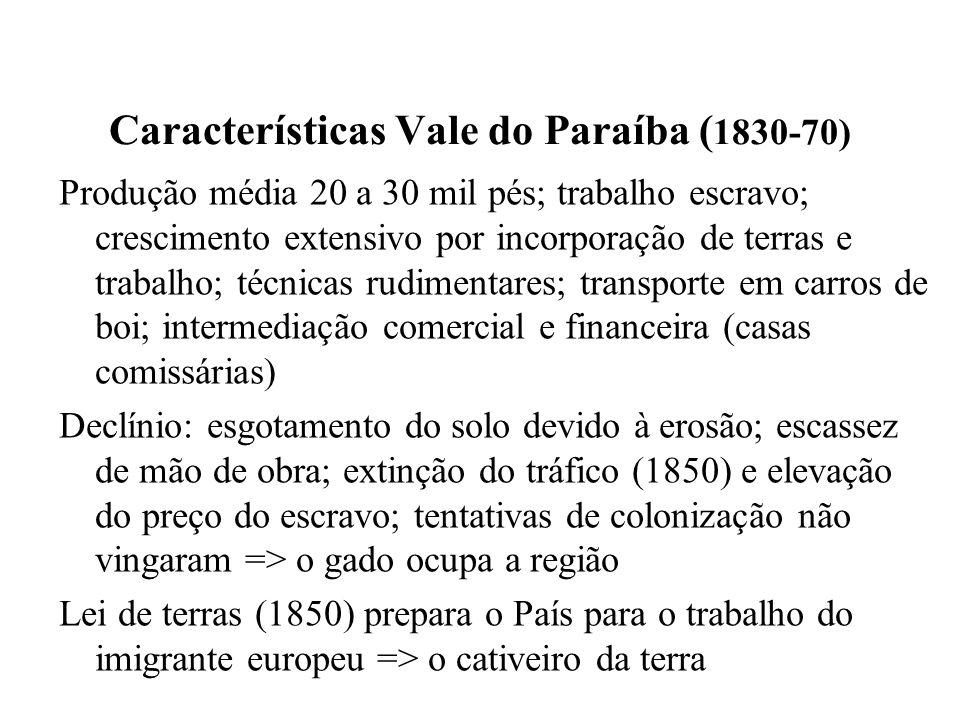 Características Vale do Paraíba (1830-70)