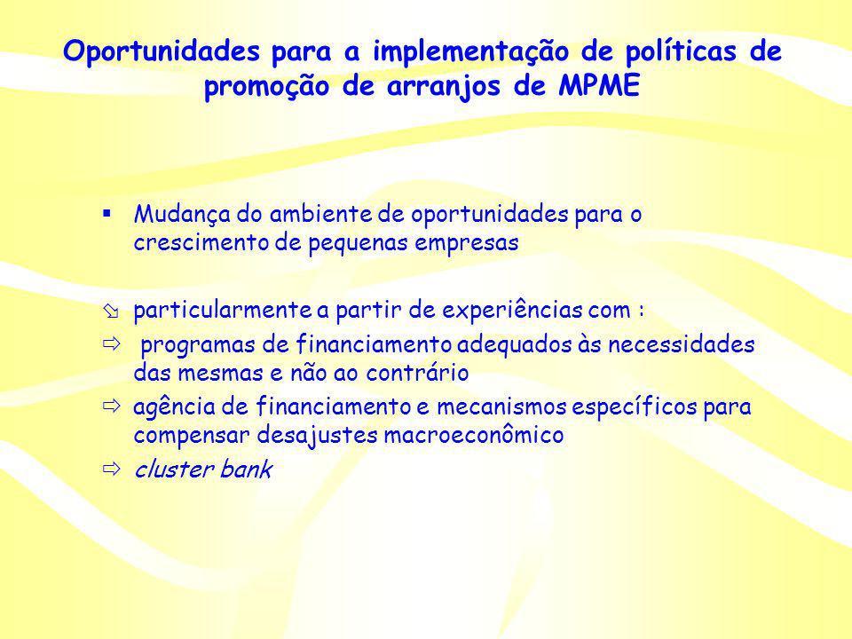Oportunidades para a implementação de políticas de promoção de arranjos de MPME