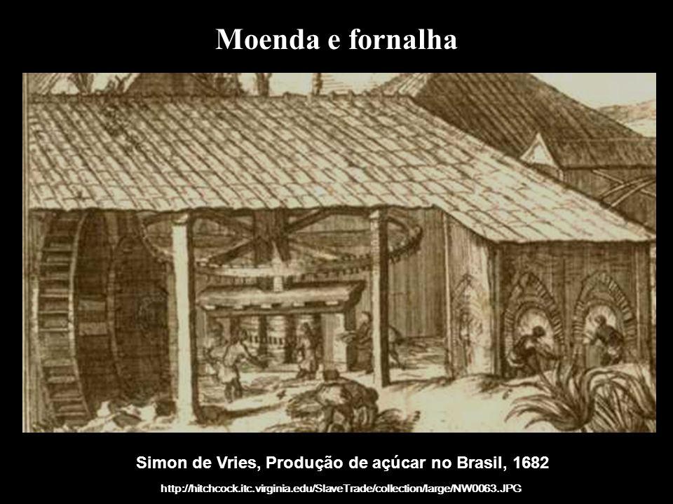 Simon de Vries, Produção de açúcar no Brasil, 1682
