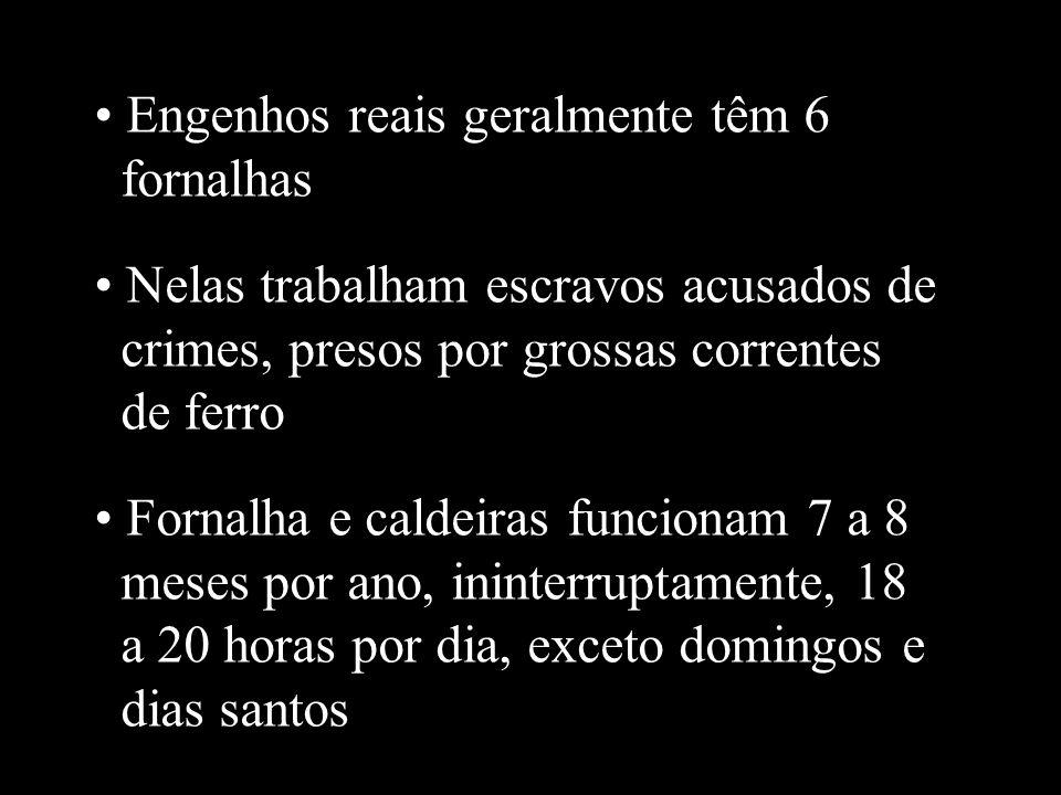 Engenhos reais geralmente têm 6 fornalhas
