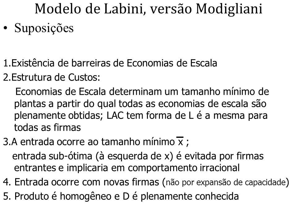 Modelo de Labini, versão Modigliani