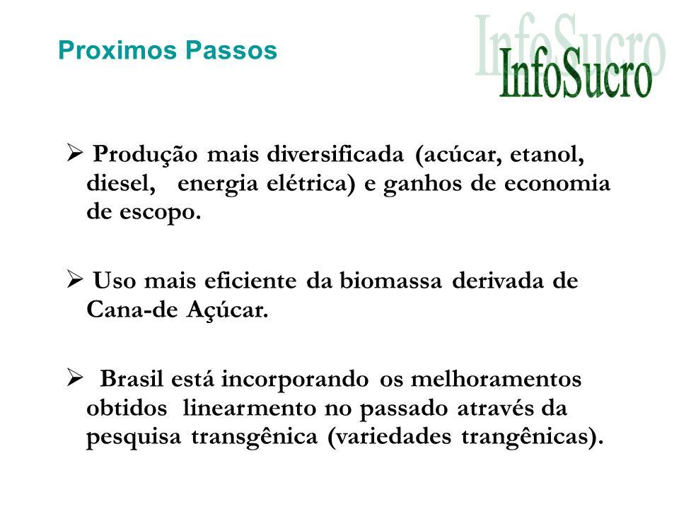 Uso mais eficiente da biomassa derivada de Cana-de Açúcar.