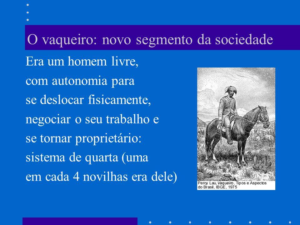 O vaqueiro: novo segmento da sociedade