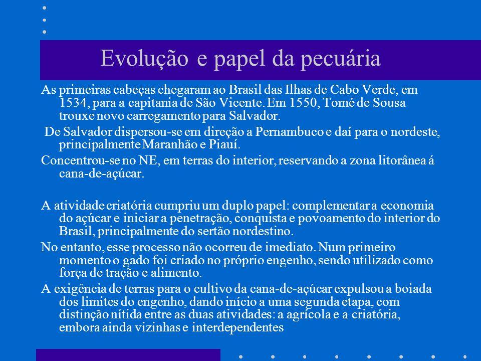 Evolução e papel da pecuária