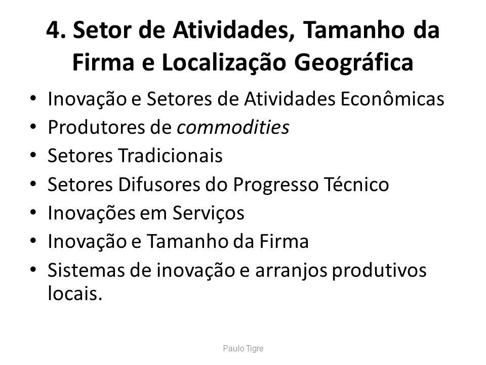 4. Setor de Atividades, Tamanho da Firma e Localização Geográfica