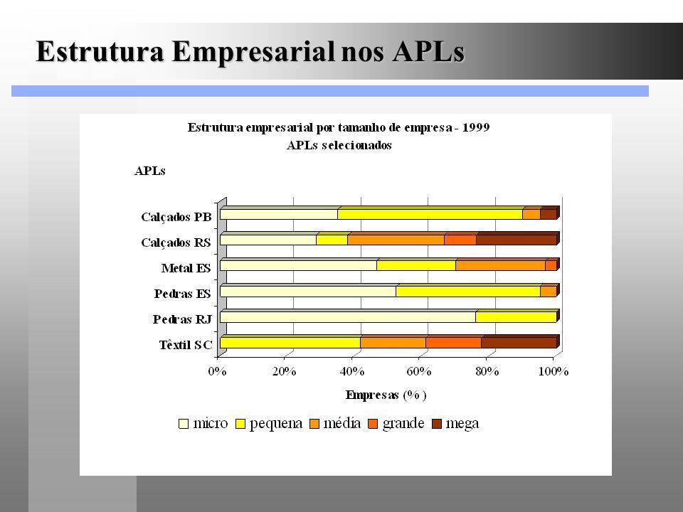 Estrutura Empresarial nos APLs