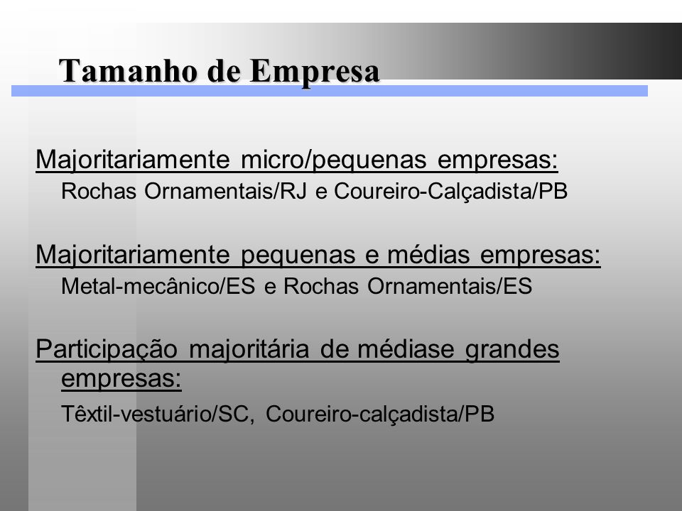 Tamanho de Empresa Majoritariamente micro/pequenas empresas: