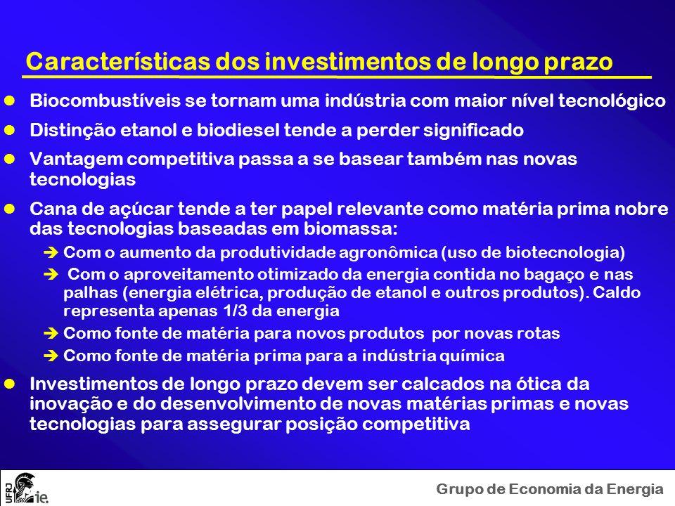 Características dos investimentos de longo prazo
