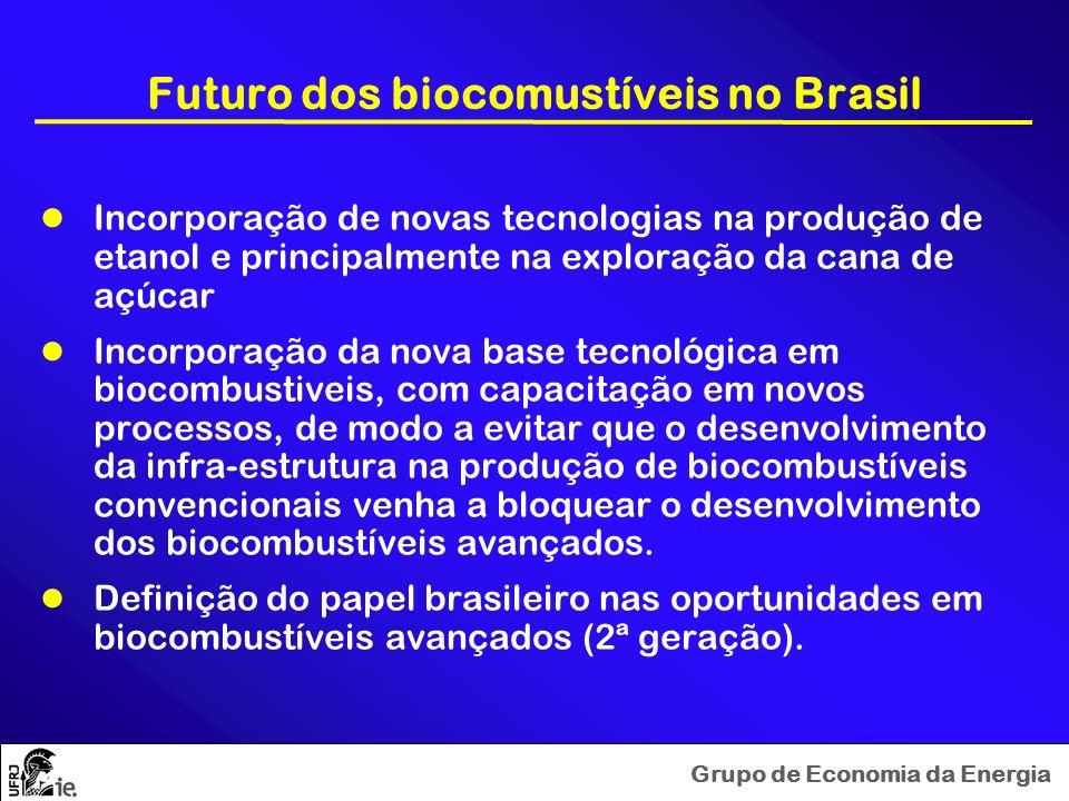 Futuro dos biocomustíveis no Brasil