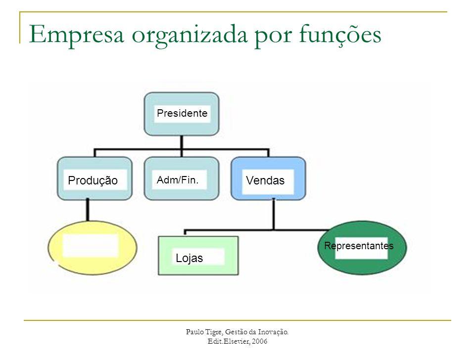 Empresa organizada por funções