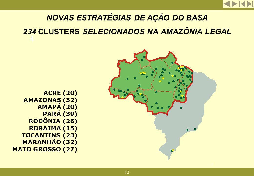 NOVAS ESTRATÉGIAS DE AÇÃO DO BASA 234 CLUSTERS SELECIONADOS NA AMAZÔNIA LEGAL